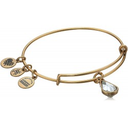 Alex and Ani Birth Month Charm with Swarovski Crystal Bangle Bracelet