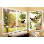 Oster Sunny Seat Window-Mounted Cat Bed, 50 Pounds (034264445611)